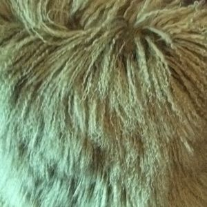 Mongolian wool curly pillows